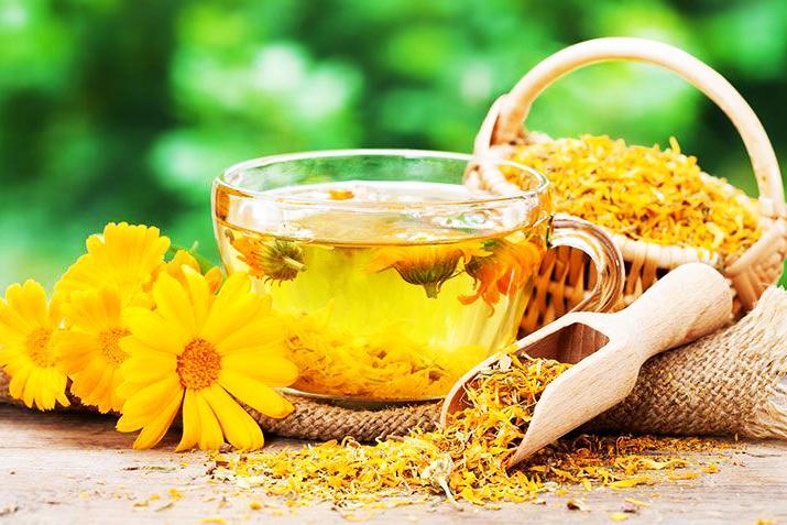 trị rụng tóc bằng bột hoa cúc