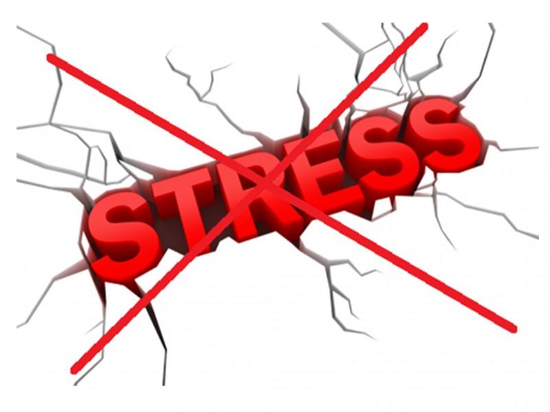 Hạn chế stress