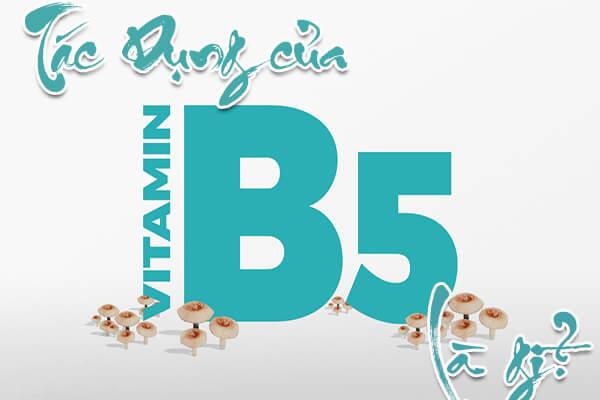 tác dụng của vitamin b5 với tóc