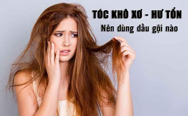 tóc khô xơ nên dùng dầu gội gì