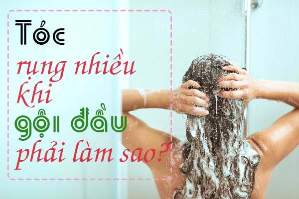 Tóc rụng nhiều khi gội đầu
