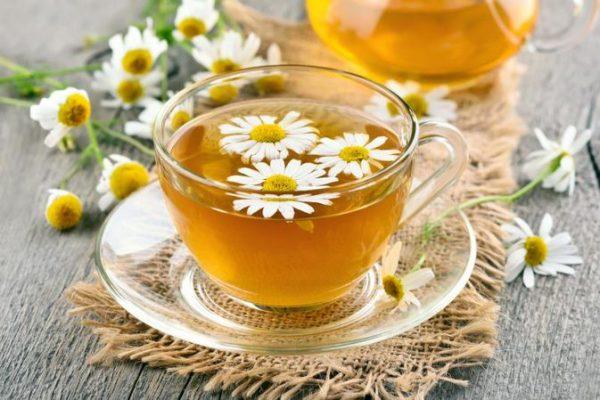 trị gàu bằng trà hoa cúc